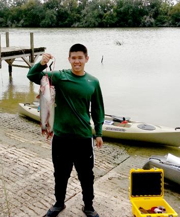 Catfish hasil fish trap