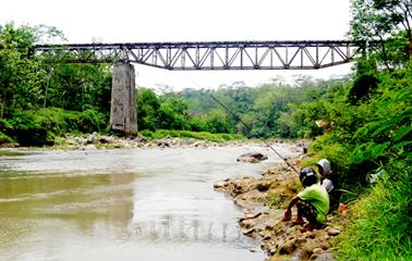 Kenali Dulu Karakter Sungainya Lokasi Keberadaan Ikan Sebelum Mancing Kabar Mancing