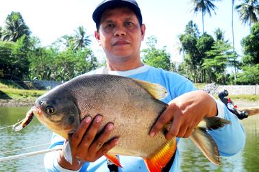 Ikan bawal, casting dengan minnow, spot embung buatan