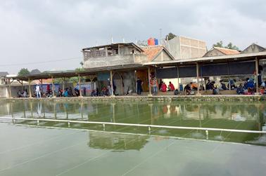 Kolam pemancingan untuk lomba dengan tiket bervariasi