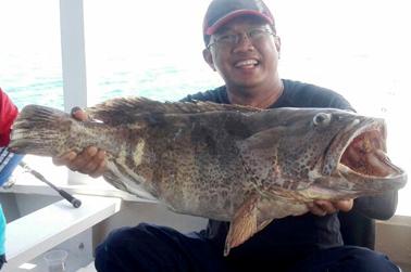 Ikan kerapu yang berhasil dipancing