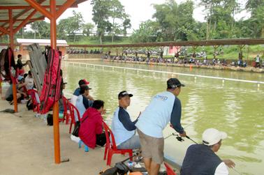 Kolamnya luas dengan jarak antar lapak 1,20 meter