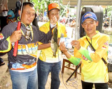 Pemenang ikan balap (kiri)